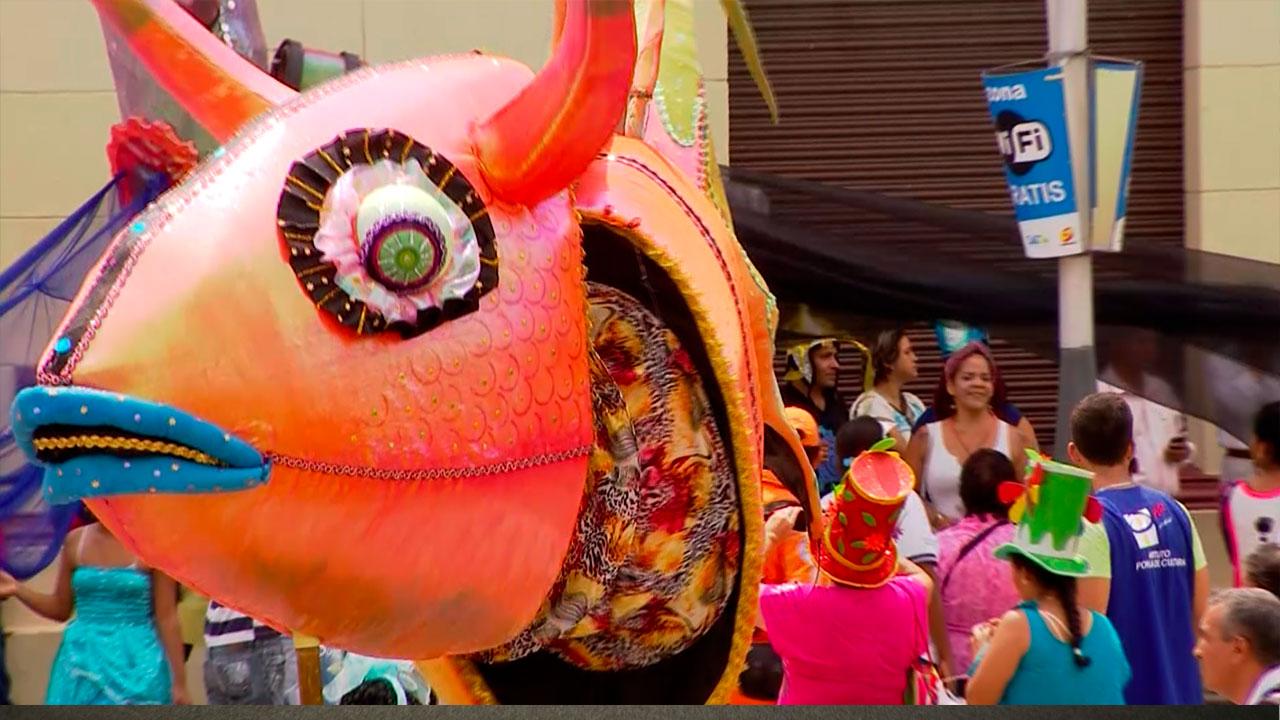 ¡Vive el Carnaval de Negros y Blancos por nuestro canal!